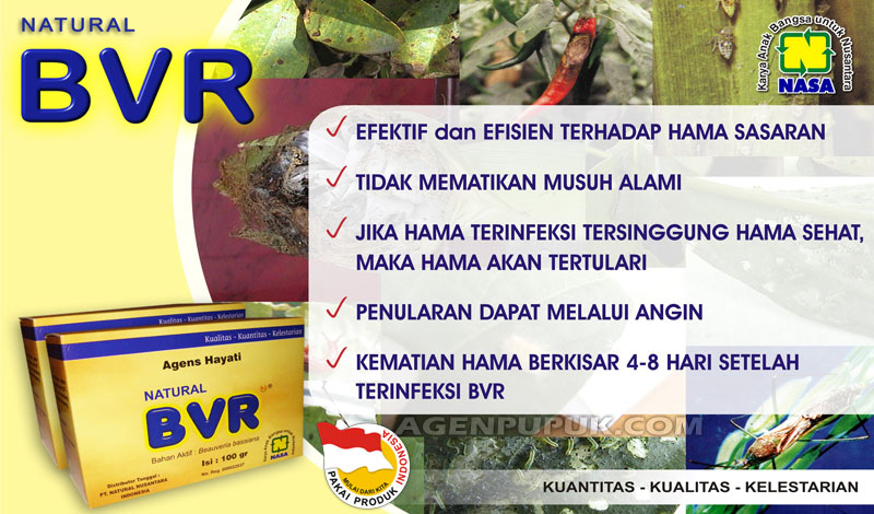 Brosur Natural BVR NASA